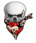 GOTHIC BIKER Pirate SKULL With Face Bandana & Tattoo Style Skull & Roses Motif External Vinyl Car Sticker 110x75mm
